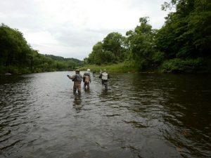 初日の午後は全員で川に向かいました。